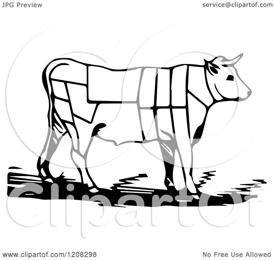 Bullock clipart #7, Download drawings