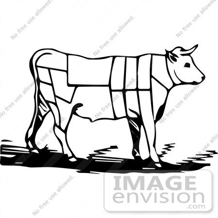 Bullock clipart #16, Download drawings