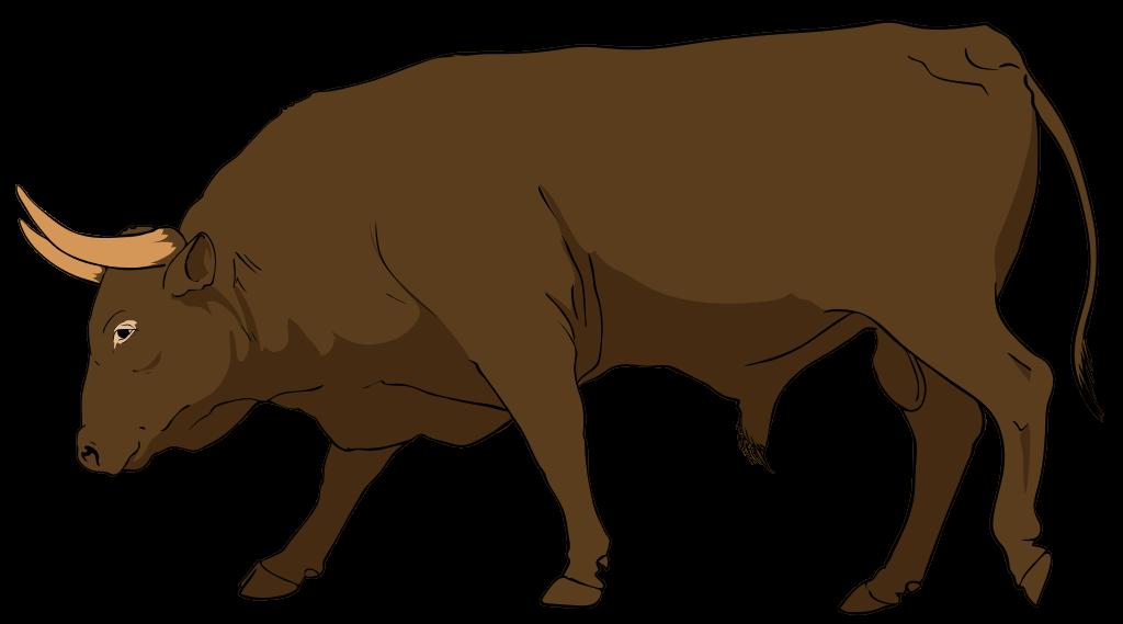 Bulls clipart #2, Download drawings