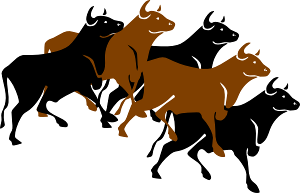 Bulls clipart #16, Download drawings