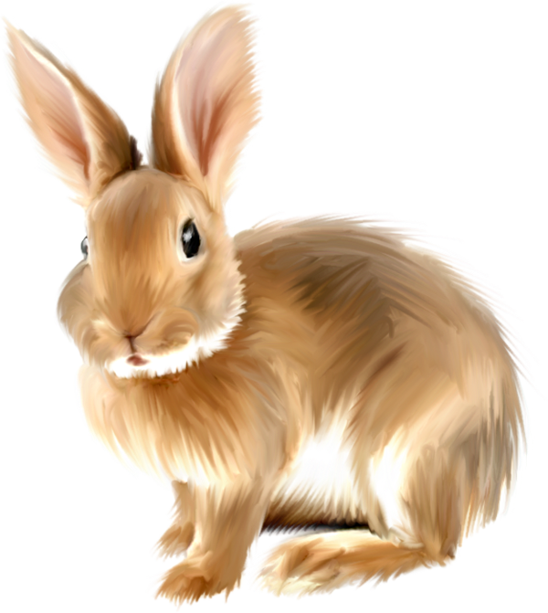 Realistic clipart #2, Download drawings