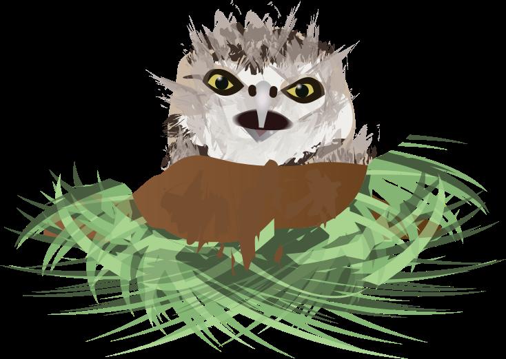 Burrowing Owl svg #15, Download drawings