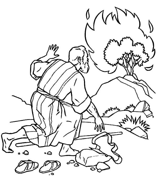 Bush coloring #15, Download drawings
