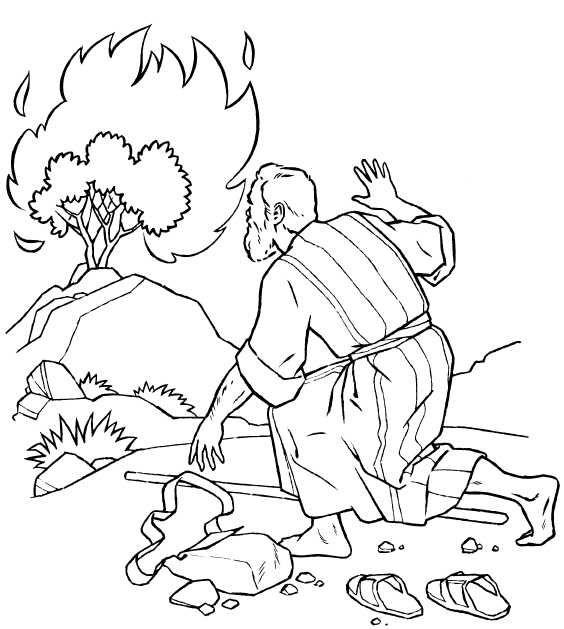Bush coloring #14, Download drawings