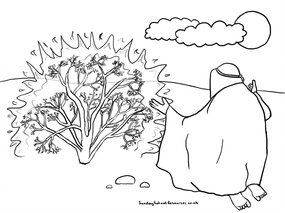 Bush coloring #9, Download drawings