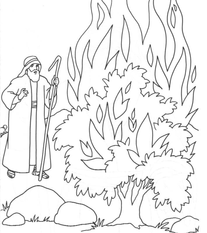 Bush coloring #6, Download drawings