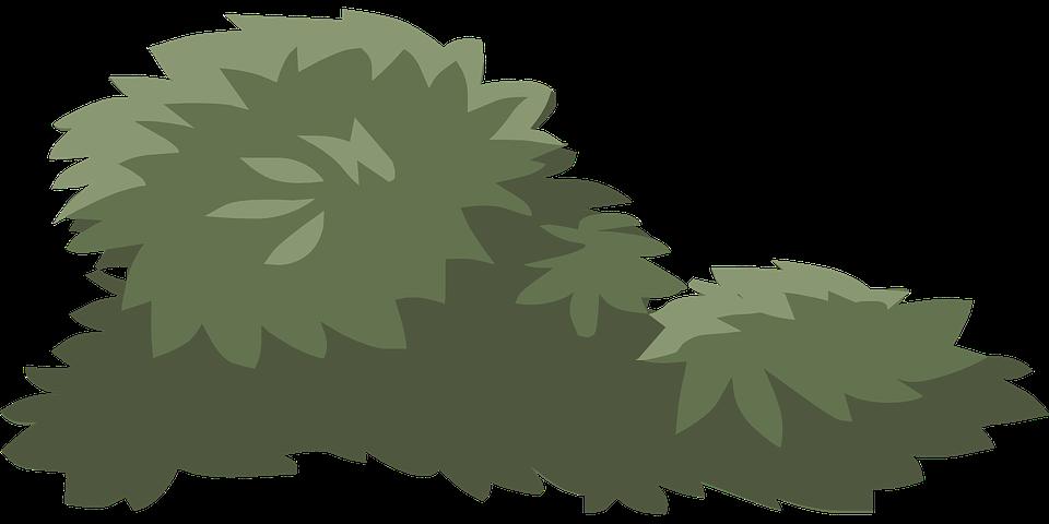 Bush svg #9, Download drawings