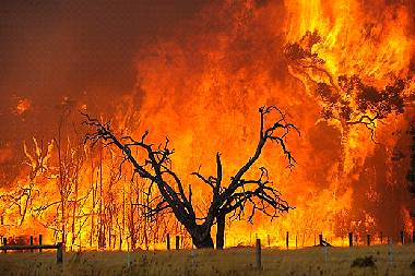 Bushfire clipart #3, Download drawings