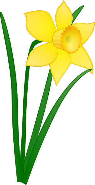 Buttercup clipart #5, Download drawings