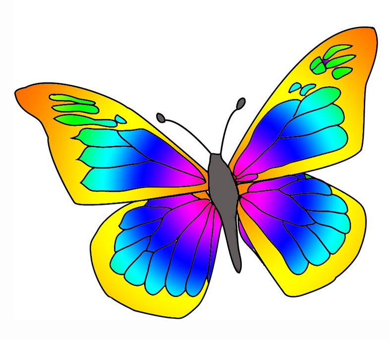 Butterfly clipart #8, Download drawings