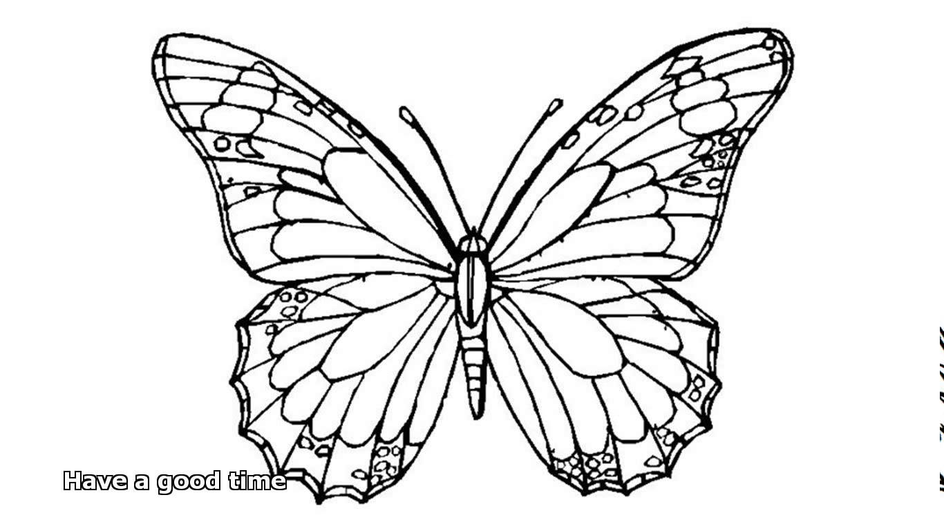 Butterfly coloring #13, Download drawings