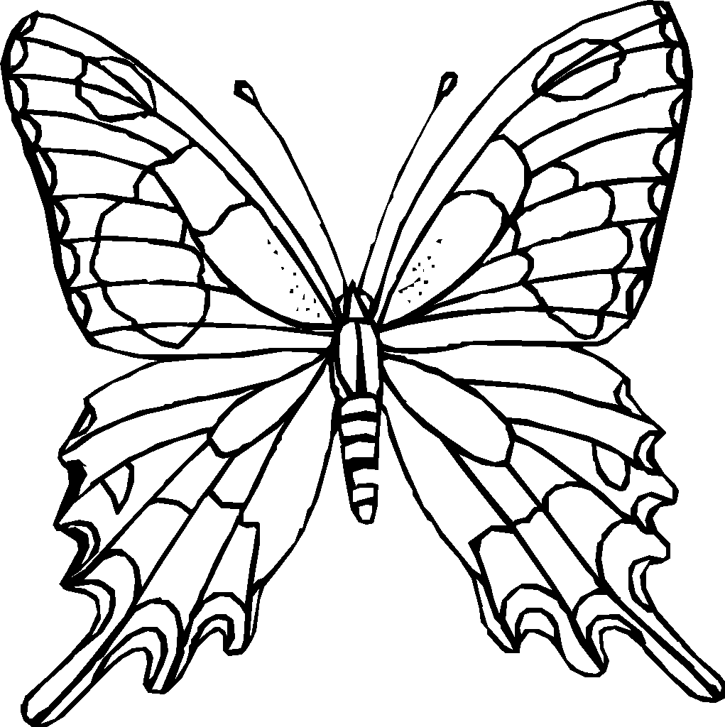 Butterfly coloring #3, Download drawings