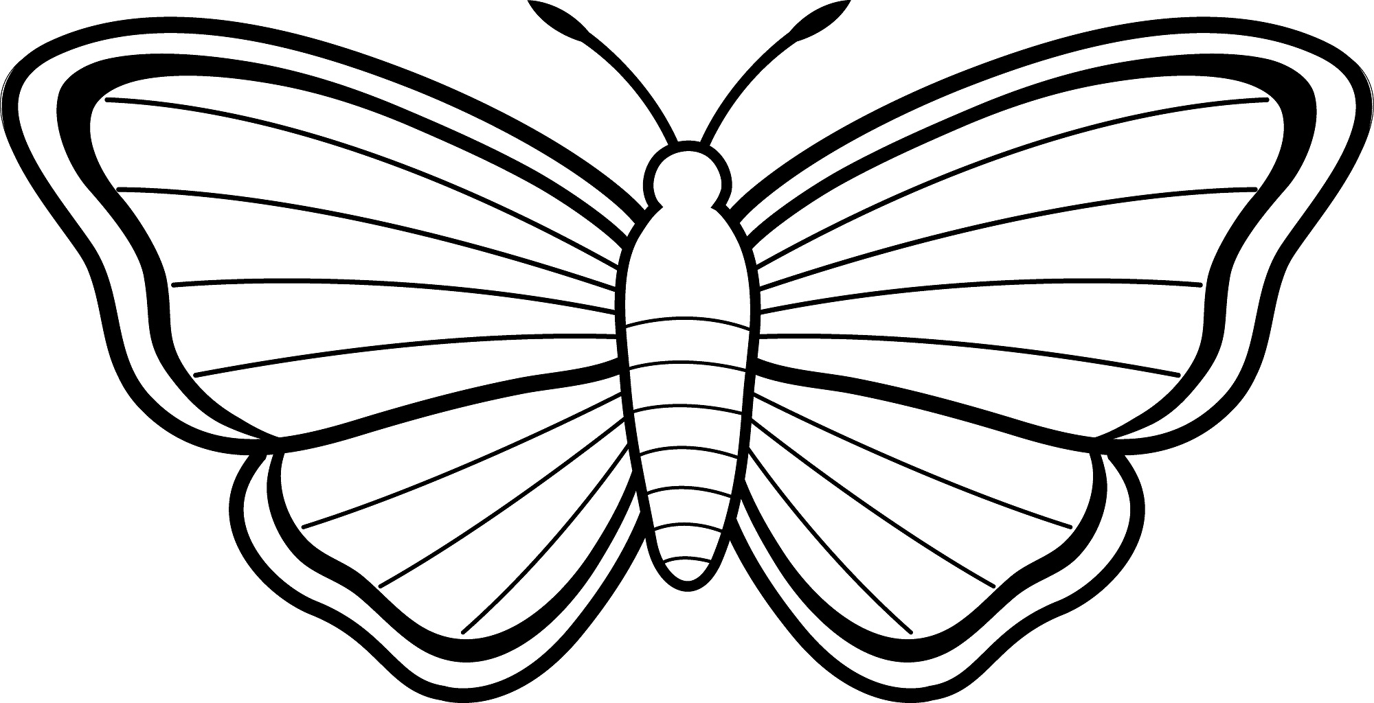 Butterfly coloring #18, Download drawings