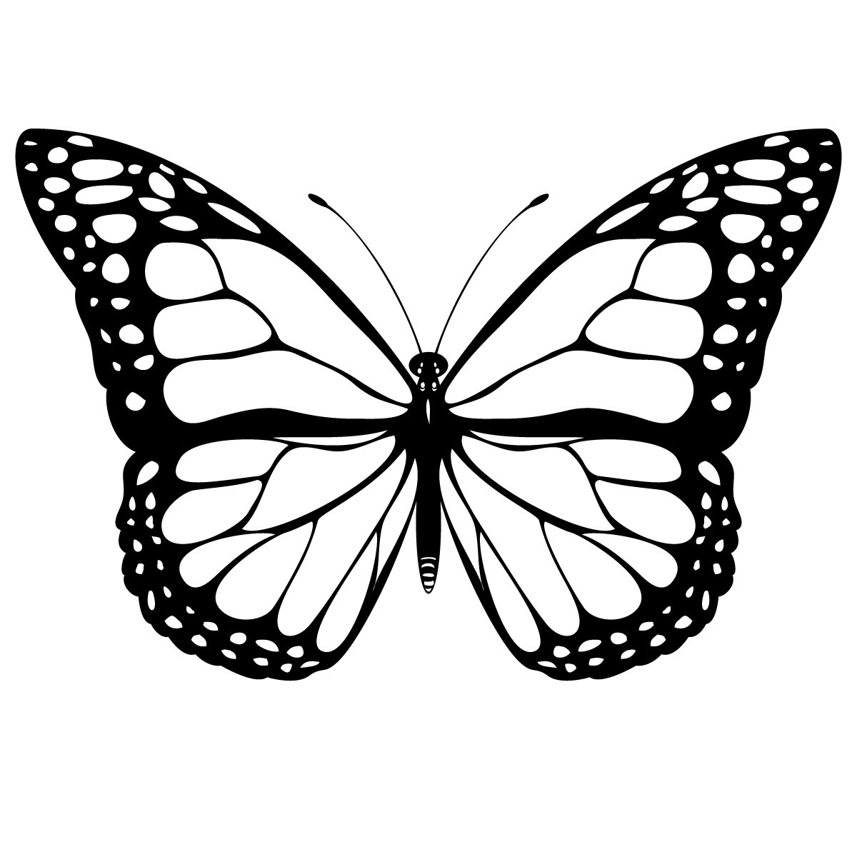 Butterfly coloring #17, Download drawings