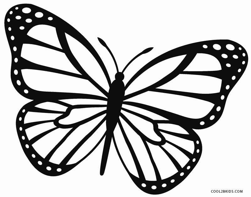 Butterfly coloring #2, Download drawings