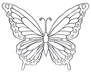 Butterfly coloring #12, Download drawings