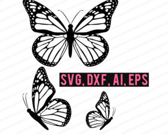 Butterfly svg #8, Download drawings