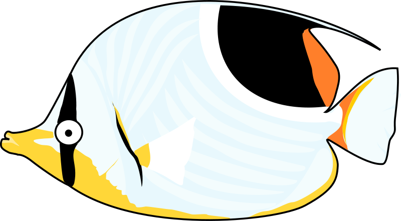 Butterflyfish clipart #15, Download drawings