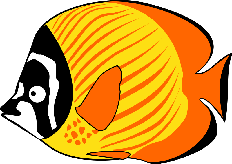 Butterflyfish clipart #20, Download drawings
