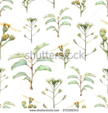 Butterweed clipart #5, Download drawings