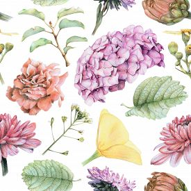 Butterweed clipart #2, Download drawings