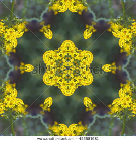 Butterweed clipart #4, Download drawings