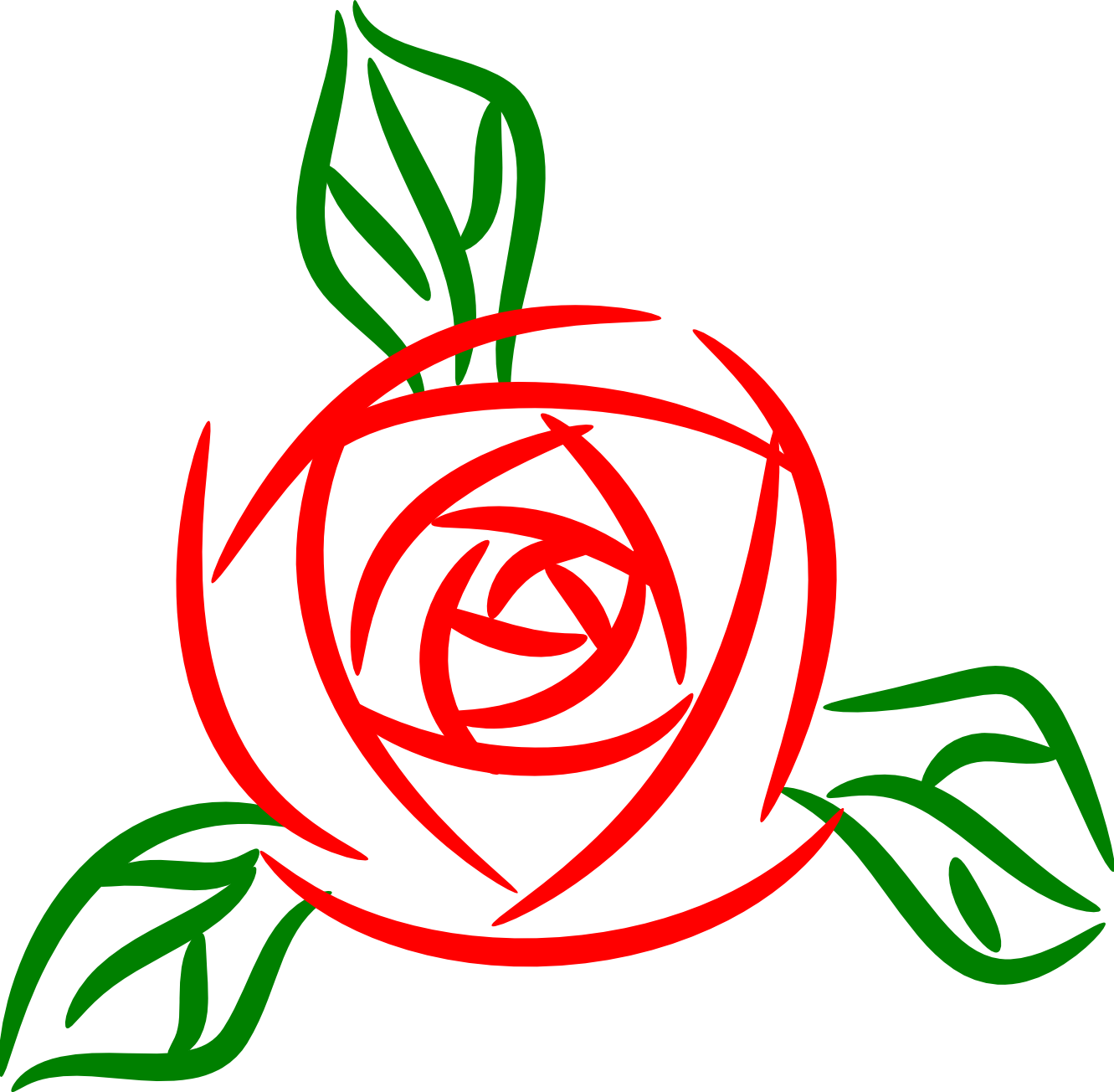 Cabbage Rose clipart #4, Download drawings