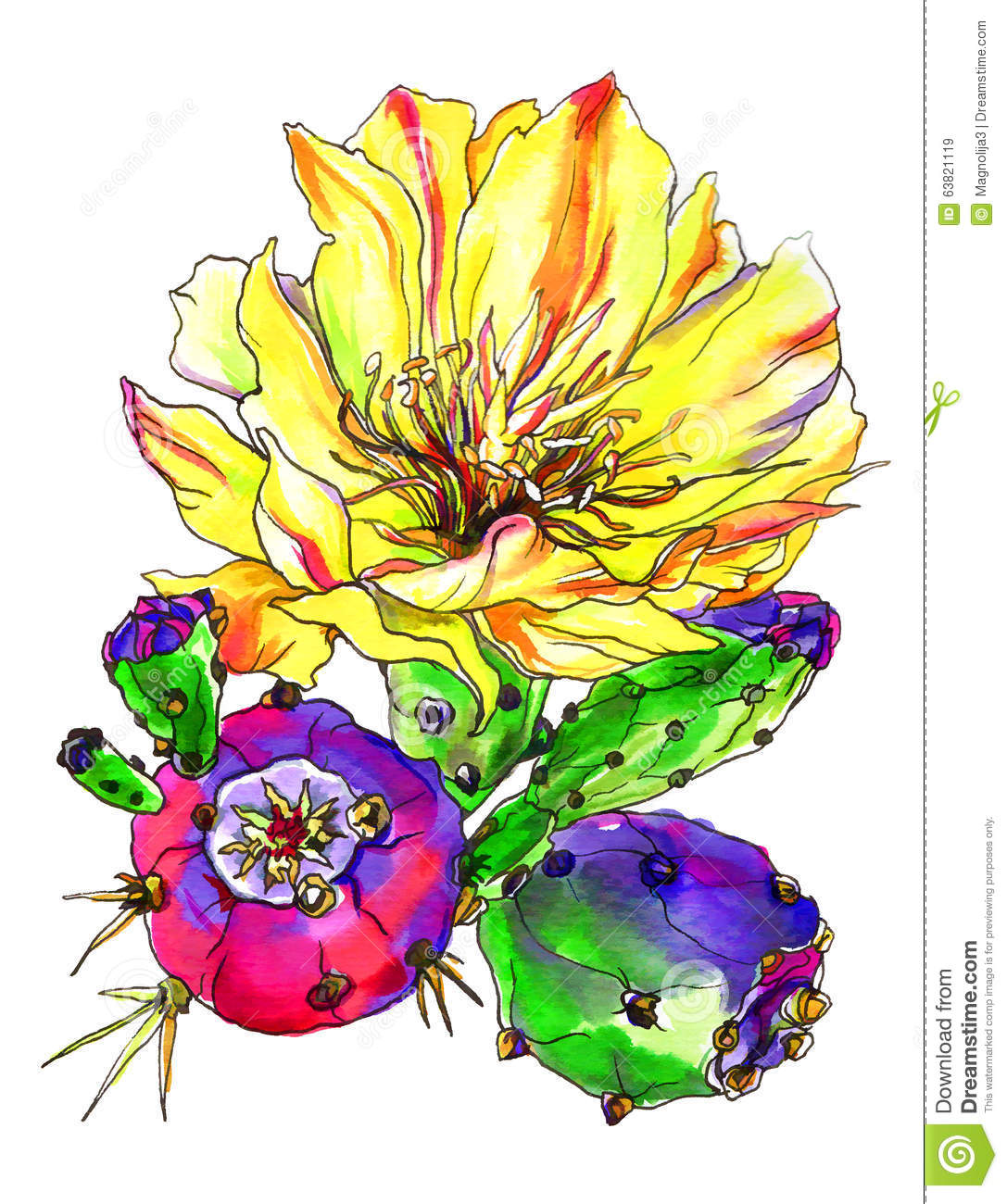 Cactus Blossom clipart #11, Download drawings