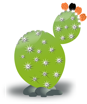Cactus Blossom clipart #3, Download drawings