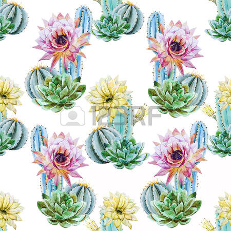 Cactus Blossom clipart #9, Download drawings