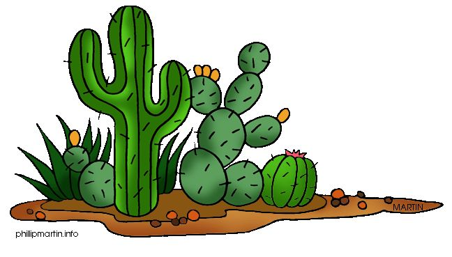 Cactus Blossom clipart #6, Download drawings