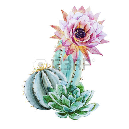 Cactus Blossom clipart #17, Download drawings