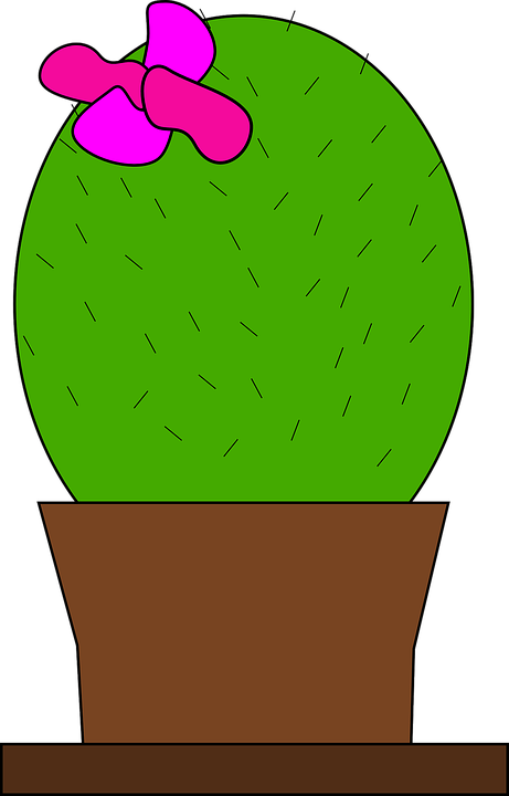 Cactus Blossom clipart #2, Download drawings