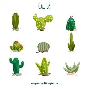 Cactus Blossom svg #2, Download drawings