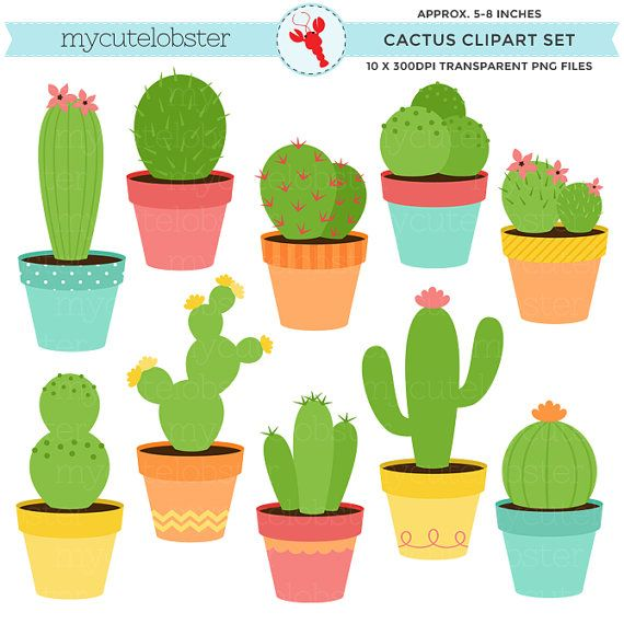 Cactus clipart #9, Download drawings