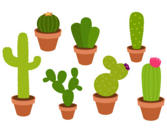 Cactus clipart #2, Download drawings