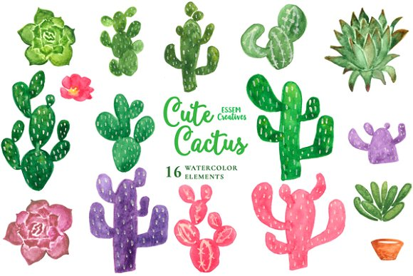 Cactus clipart #6, Download drawings
