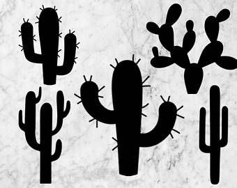 Cactus Blossom svg #12, Download drawings