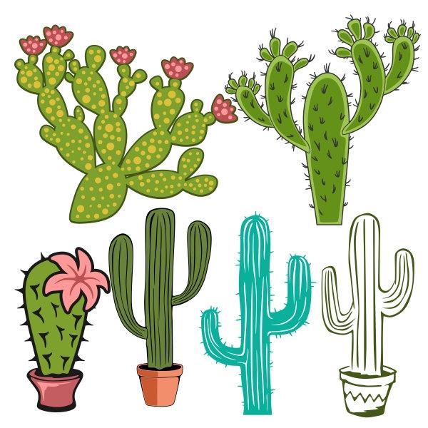 Cactus svg #19, Download drawings