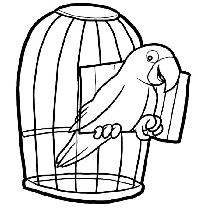 Cage coloring #12, Download drawings