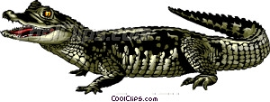 Caiman clipart #3, Download drawings