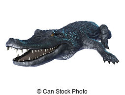 Caiman clipart #6, Download drawings