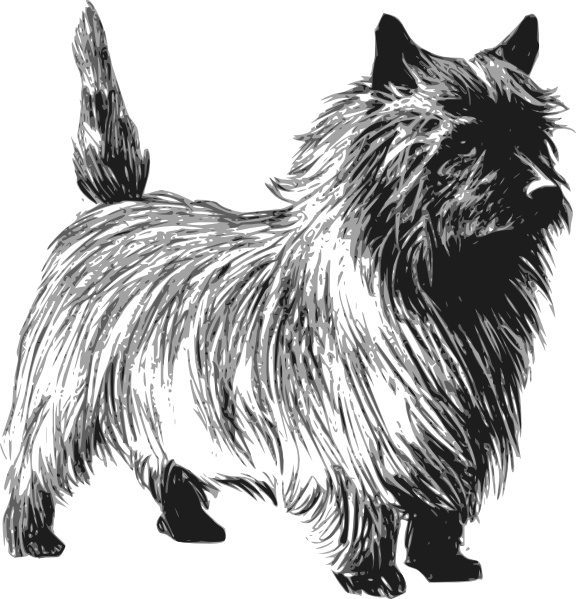 Cairn Terrier clipart #3, Download drawings