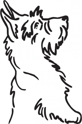 Cairn Terrier clipart #8, Download drawings