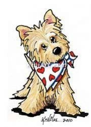 Cairn Terrier clipart #17, Download drawings