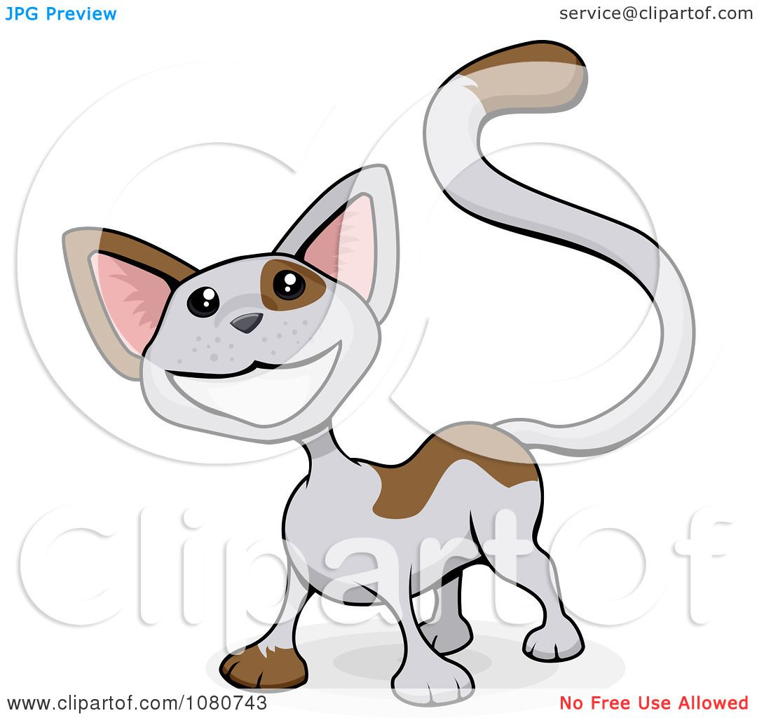 Calico Cat clipart #14, Download drawings