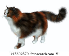 Calico Cat clipart #12, Download drawings