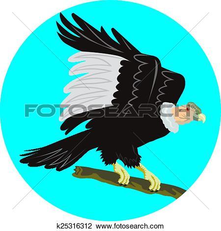 California Condor  clipart #1, Download drawings