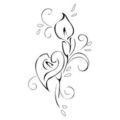 Calla clipart #12, Download drawings
