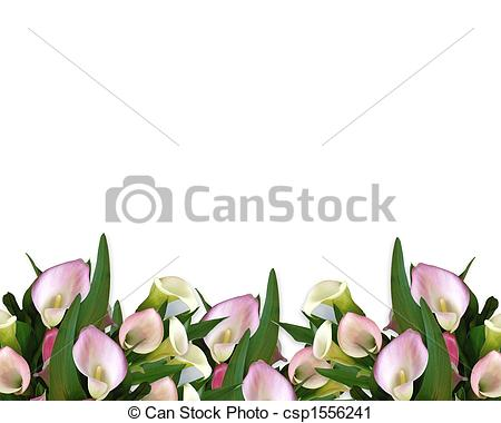 Calla clipart #6, Download drawings